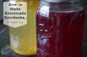 homemade-kombucha